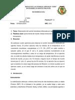 Informe12_NRC3312_Guasumba_Maila_Sanmartin.docx