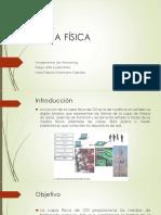 Presentación Capa Fisica.pptx