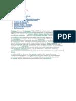 ¿Qué es el SNIP.pdf