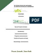 Guía Proyectos.docx