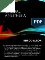 Anestesi Lokal Pada Bedah Plastik EDD Edit (1)