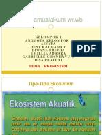 Presentation 1 Ekosistem c