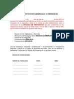 1.ACTA DE CONSTITUCIÓN DE LAS BRIGADAS DE EMERGENCIAS.docx