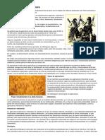 Historia de la agricultura.docx