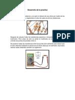 Desarrollo de la practica.docx