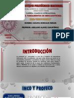 Mi presentacion sobre el INCO y PROFECO