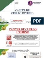 Caso Clinico 3 , Pato II
