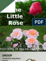 ROSE PLANT DEMO.pptx