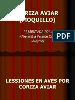 CORIZA_AVIAR_trabajo_de_patologia.ppt