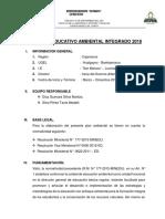 PLAN AMBIENTAL 2018  RECTIFICADO.docx