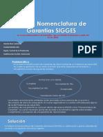 Nueva Nomenclatura  de Garantias  en sistema SIGGES.pptx