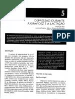 Psicopatologia adulto_Depressão durante a gravidez e lactação .pdf