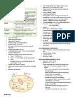 Arenavirus Bunyavirus Filovirus