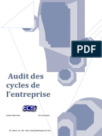 Audit des cycle de l'ese.pdf
