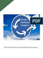 Resilienz 8 S..pdf