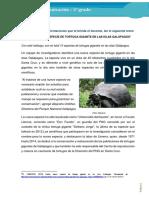 RP-COM2-K14 - Ficha N°14.docx