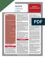 Guia Academico - 2009 - Constitucional 1