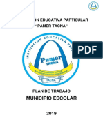 PLAN_MUNICIPIO_2019 PAMER.docx
