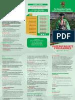 Undergraduate Brochure 1