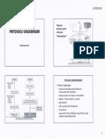 3736_Patologi Lingkungan dr.ferdinant.pdf
