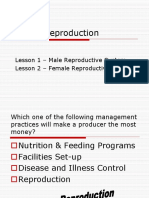 1. and 2. Lesson 1 and 2 Male and Female Reproductive Systems.ppt