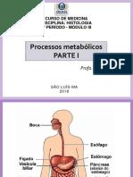 AULA1_DIGESTORIO-1.pdf