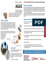 Chagas folleto