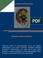 Auriculoterapia Sistema Noack