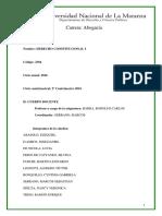 Programa D.constitucional I