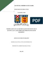 MEMORIA - José Ignacio Schilling Jeraldino_.pdf