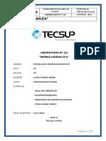 GLAB-S02-CPINEDO-2019-01.docx