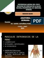 1° practica fisio-1