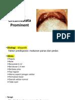 Papilla Circumvalata Prominen, bifid, smokers melanosis.pptx