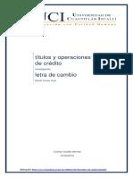 Cristian Castillo Montie1.docx