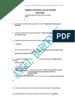 miembro-superior-guia-de-examen-de-anatomia.docx