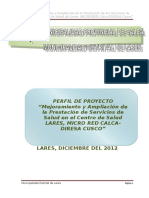 PERFIL-LARES-FIN.doc