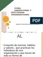 Cultura Organizacional y Efectividad Organizacional
