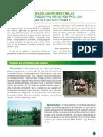 Lectura i Sistemas Agroforestales