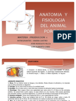 Anatomia y Fisiologia Del Animal Porcion
