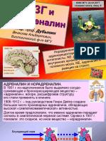 lektsia_5 мозг и норадреналин.pdf