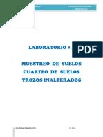 GEOTENCIA LAB 1ER PARCIAL.docx