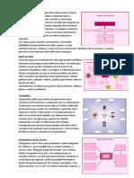 Organizadores Graficos de Los Difentes Tipos de Mercado