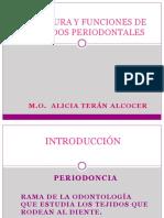 TEJIDOS_PERIODONTALES