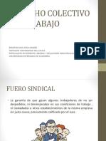 Presentacion Raul Rico