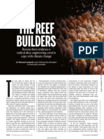 The reef builders. Science 2019.pdf