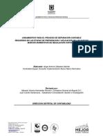 LINEAMIENTOS PARA EL PROCESO DE DEPURACIÓN CONTABLE CON ANEXOS.pdf