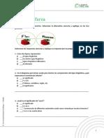 anexo1 -tarea(3)