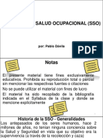 01 - IIN549 1 SSO, Historia y Evolucion de La SSO, 43dp