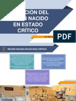 Tema 01 - Recepcion Del Rn en Estado Critico