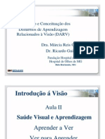Aula 2 Dr. Ricardo Guimaraes Intro Fundacao Hospital de Olhos Curso Profess Ores Dislexia de Leitura
